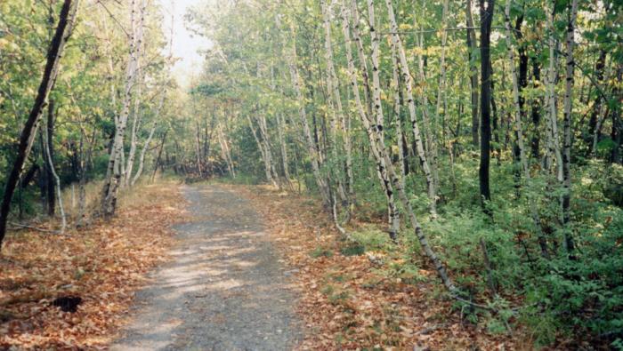 You'll trek  portions of the historic Appalachian Trail.