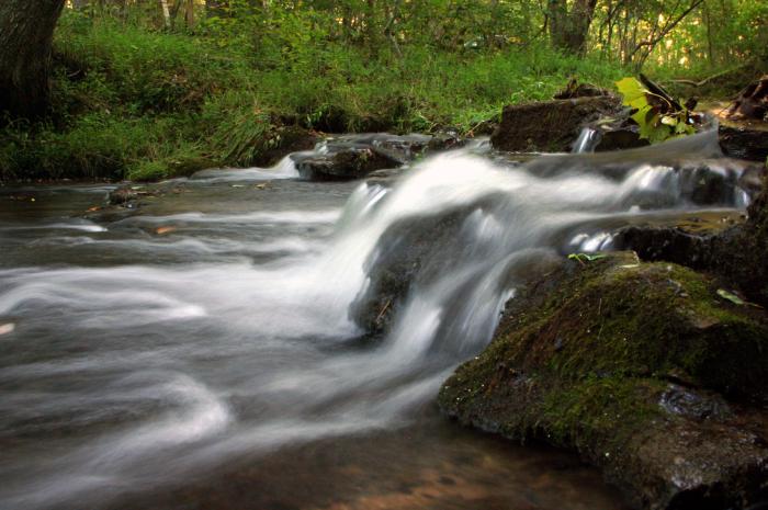 6. Bowie Nature Park - Fairview