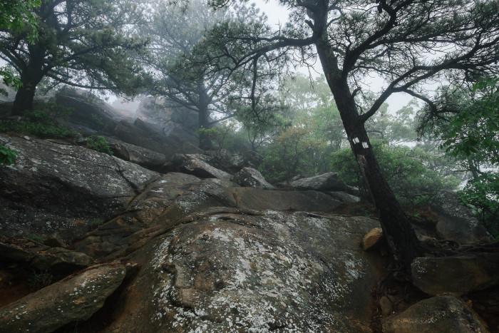 3. Breakneck Ridge Trail