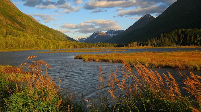 2. Chugach National Forest (Tern lake)