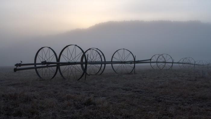 3.  A frosty morning on a farm in Eastern Washington.