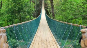This Terrifying Swinging Bridge In Tennessee Will Make Your Stomach Drop