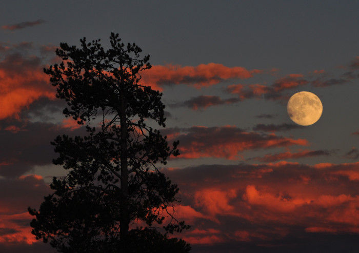 14.  Full moon over the Madison River in Yellowstone National Park.