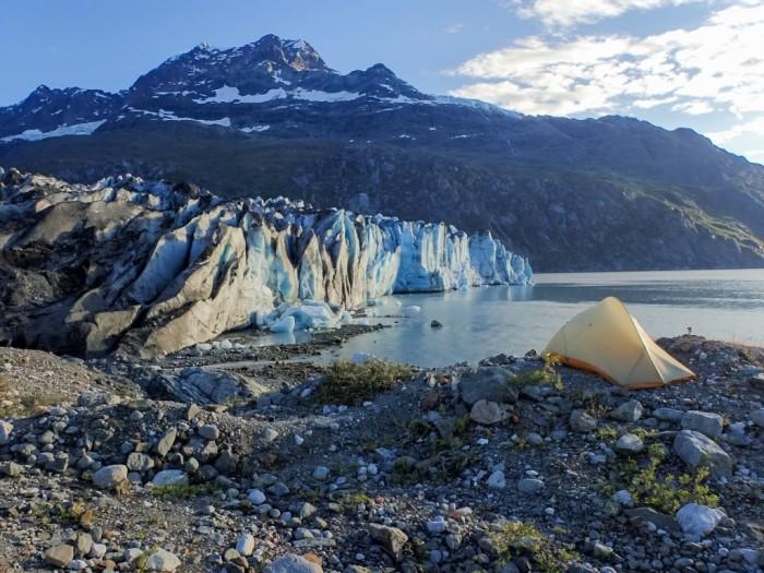 6. Lamplugh Glacier - Glacier Bay National Park