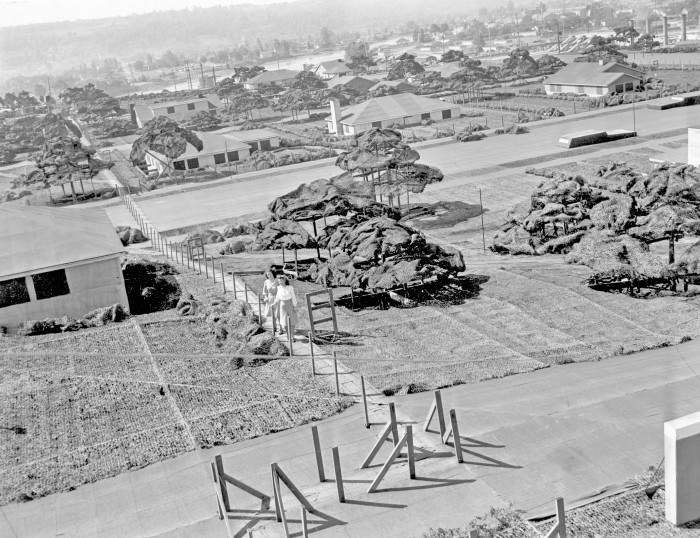 1. During World War II, Boeing camouflaged a secret bomber-making factory in Seattle by covering it entirely with a fake neighborhood created by a Hollywood set designer.