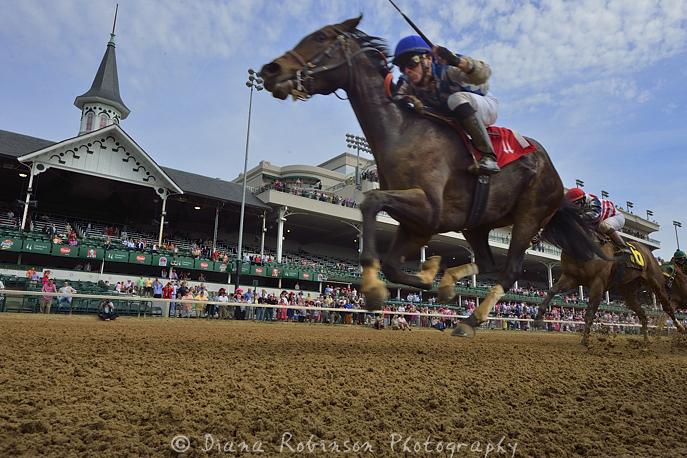 7. Horse racing