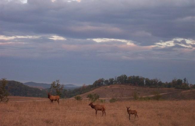 Jenny Wiley State Park.