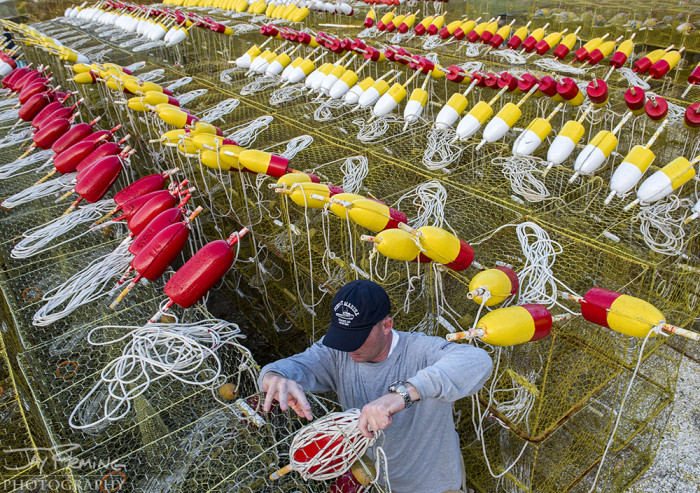 As Spring approaches, watermen prepare for the crabbing season by rigging their crab pots and painting buoys.