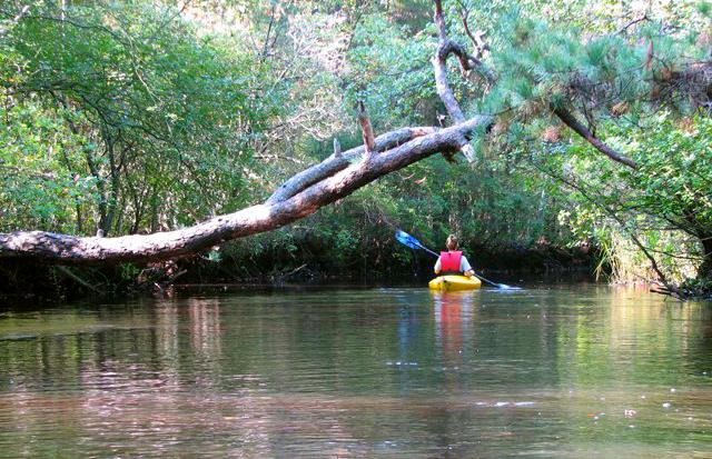 12. Mick's Pine Barrens Canoe and Kayak Rental, Chatsworth