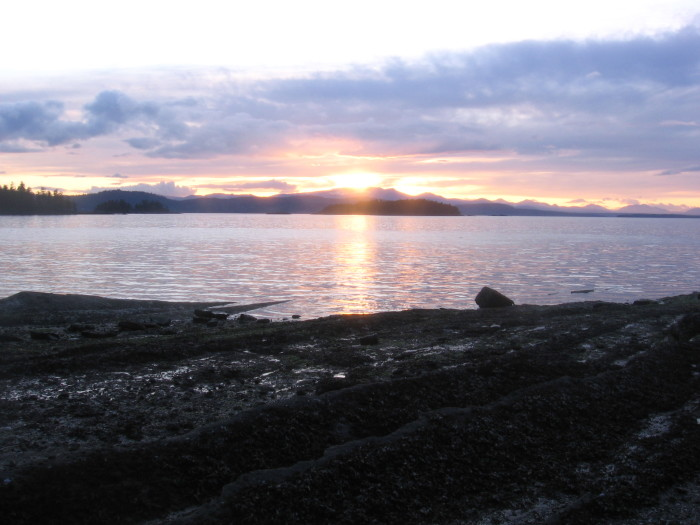 6. Montague Island (Prince William Sound)