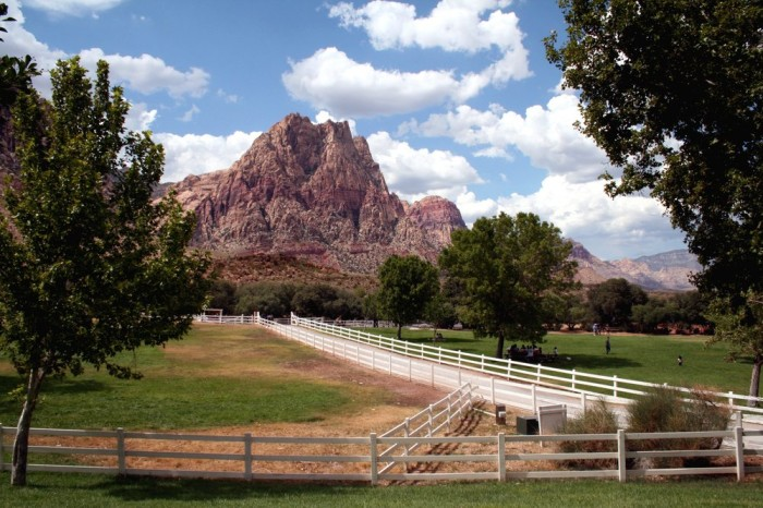 9. Spring Mountain Ranch State Park - Blue Diamond, NV