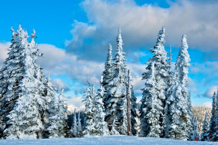 9. A Flathead Winter Wonderland
