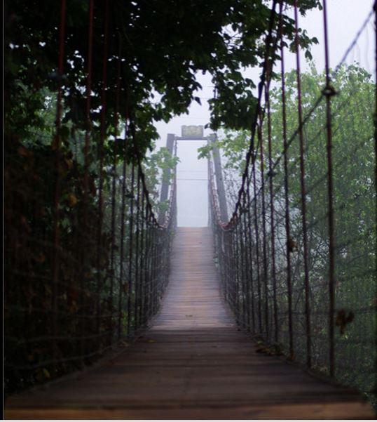 5. OBI Swinging Bridge