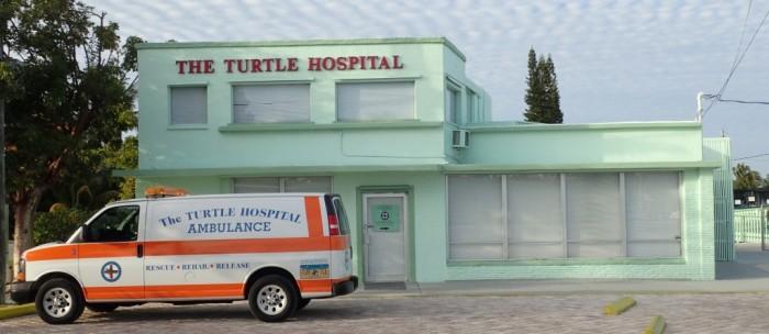 10. The Turtle Hospital, Marathon