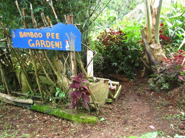 """Guests are encouraged to eat any of the organic fruits and vegetables grown on the property, but should probably look out for the """"Pee Gardens"""" – designated spaces where guests can urinate over bamboo, papaya, or banana trees."""