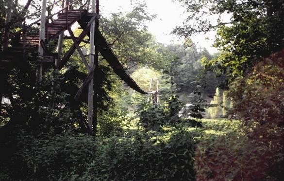 7. Red Bird Swinging Bridge