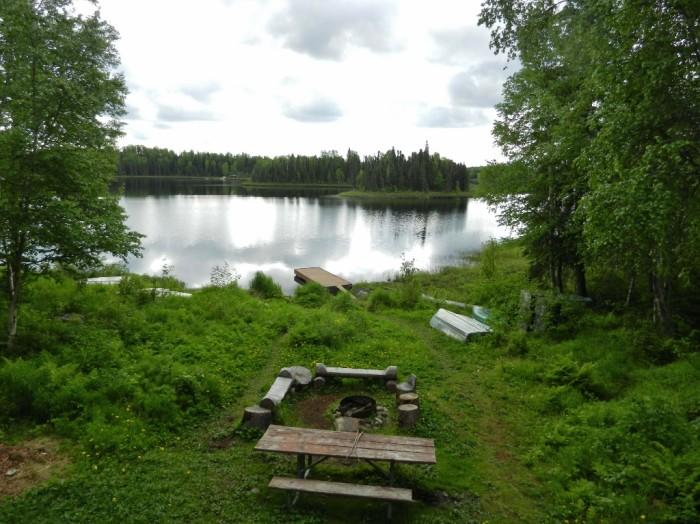 14. Red Shirt Lake – Willow
