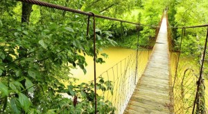 These 10 Terrifying Swinging Bridges In Kentucky Will Make Your Stomach Drop