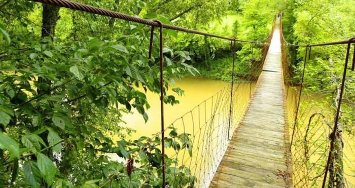 4. Rooster Branch Swinging Bridge