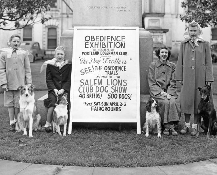 8. The Salem Lions Club Dog Show.