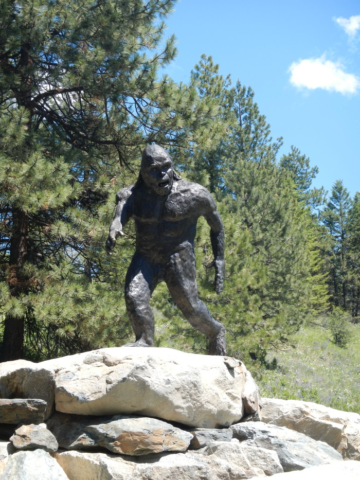 3. The harassing of Bigfoot, Sasquatch or other undiscovered subspecies is a felony.