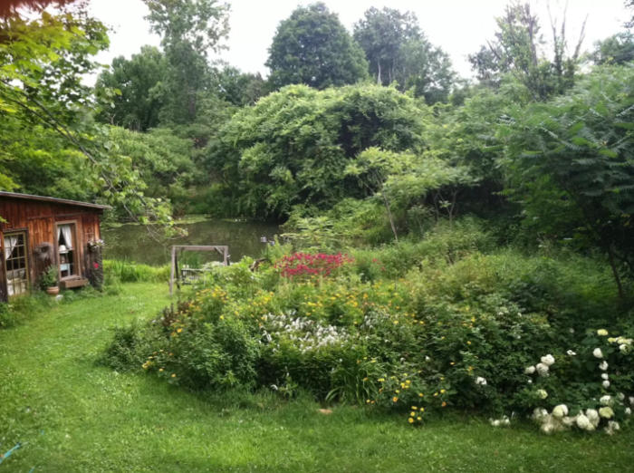 3. Quaint Cabin Overlooking Pond, Argyle