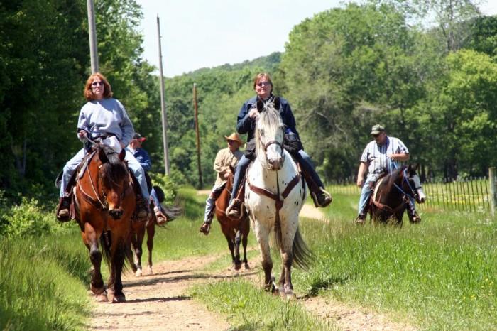 10. Take a ride via horseback.