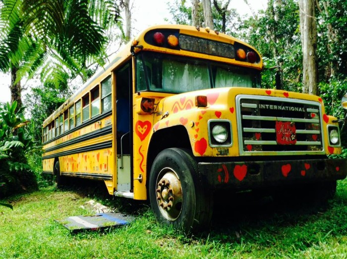 On the outskirts of Pahoa Town, Hedonisia rents out quirky accommodations like a hut built over an old tractor, or the Aloha Love Bus, decorated with erotic art. Singles can rent a bed in the dormitory-style bus, or couples can rent out the entire space.