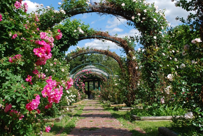 Most Beautiful Rose Gardens In The World 11 beautiful new york gardens you must see