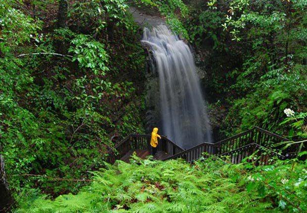 5. Falling Waters State Park, Chipley