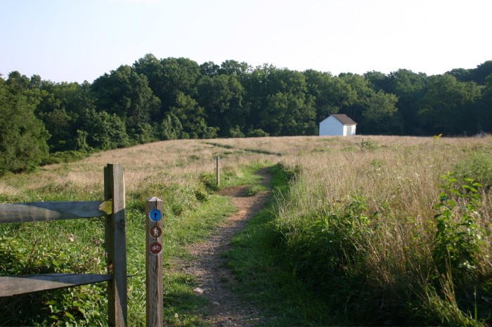 7. White Clay Creek State Park