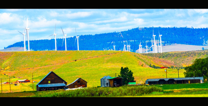7. A farm with windmills outside of Cle Elum.