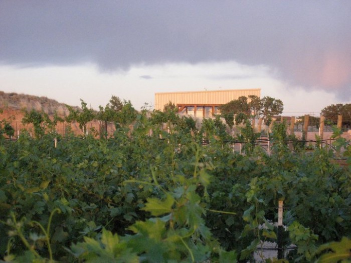 4. Casa Abril Vineyards & Winery, 01 Camino Abril, Algodones