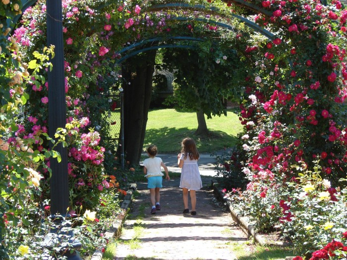 12 of the most romantic places in louisiana The gardens of the american rose center