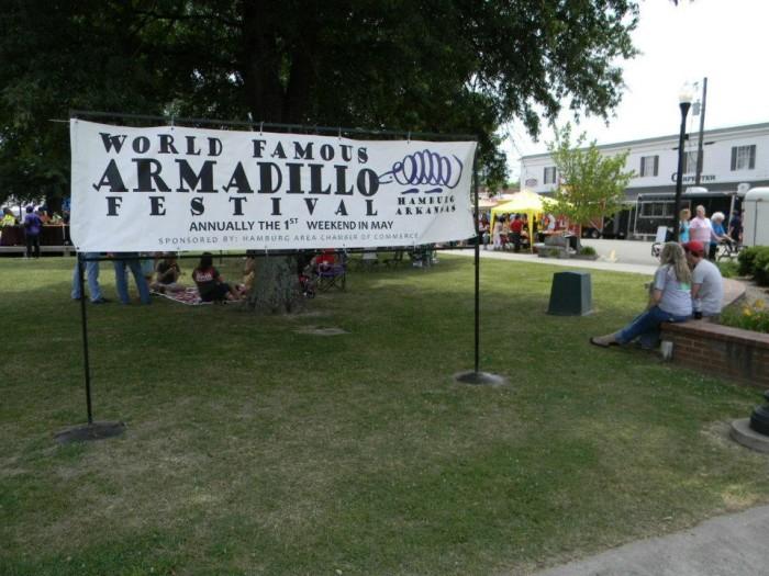 8. Armadillo Festival