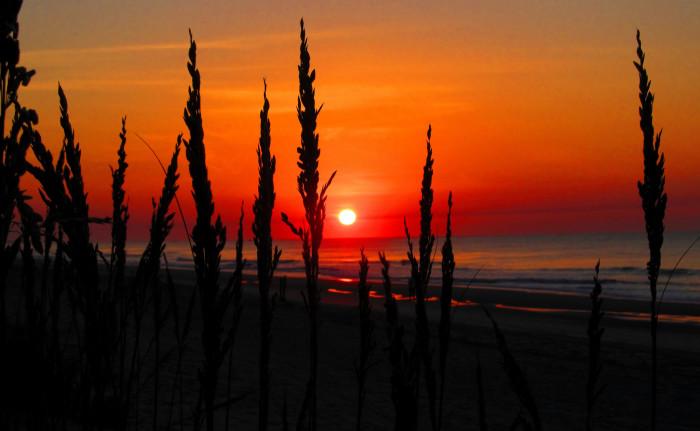 9. We have the BEST sunrises...