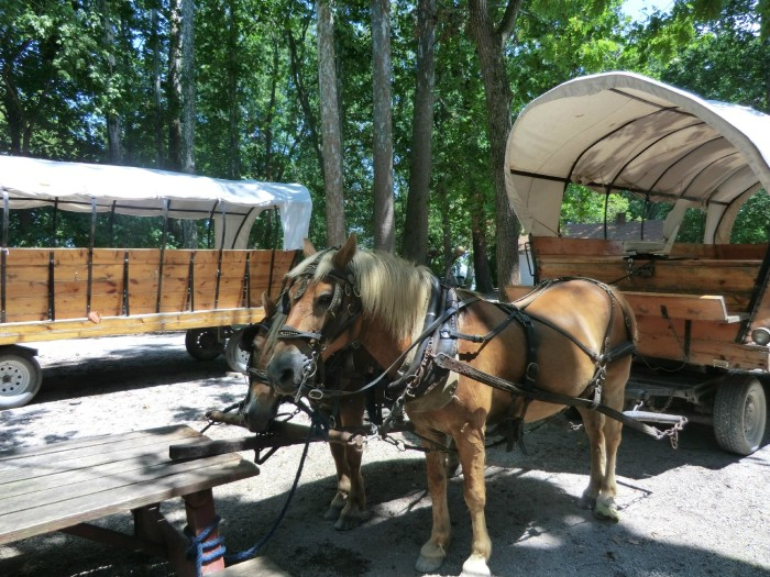 The island features horse-drawn carriage rides, a souvenir shop, bicycle rentals, picnic shelters and hiking.