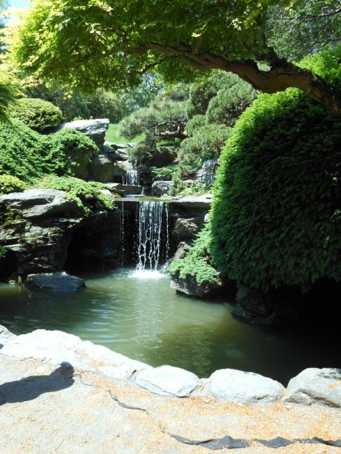 8. Brooklyn Botanic Garden, Brooklyn