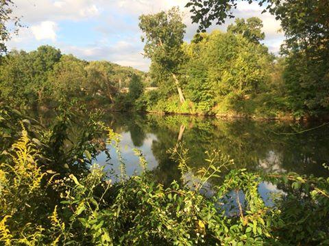 2. Buckhannon River