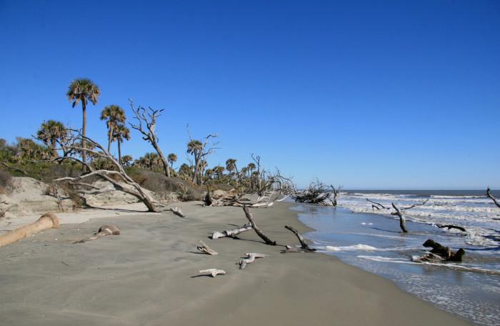 Beach In Aiken Sc