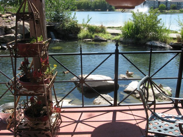 charlies on the lake 2