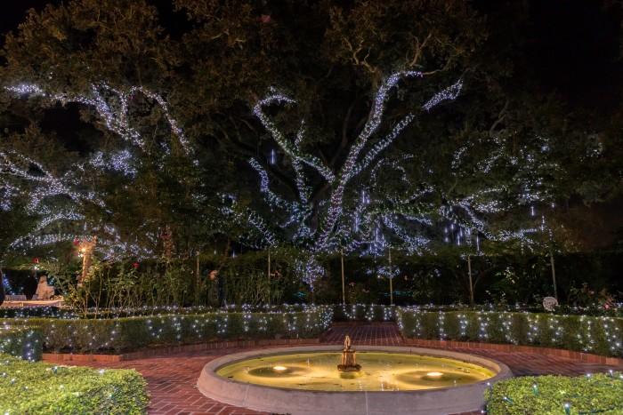 12) Visit Christmas in the Oaks in City Park