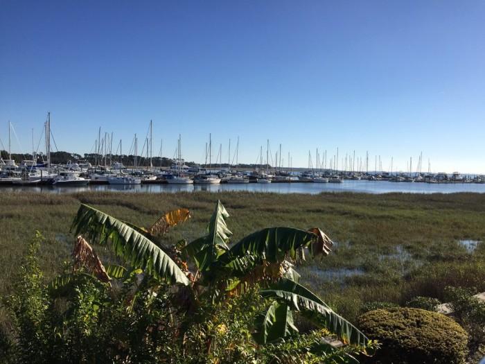 3. Coastal Kitchen and Raw Bar—102 Marina Dr, Saint Simons Island, GA 31522