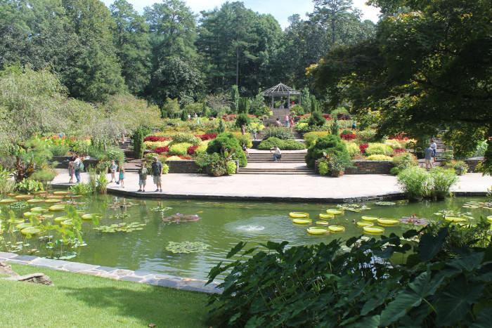 8. Duke Gardens