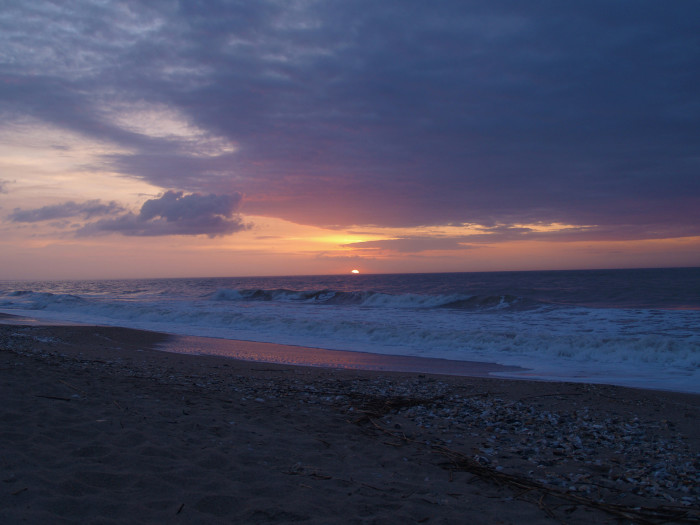 10. Edisto Beach State Park
