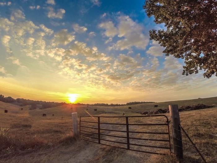 1) Cullman County Sunset