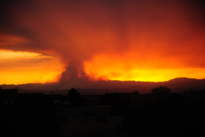 3. We deal with forest fires on an almost annual basis.