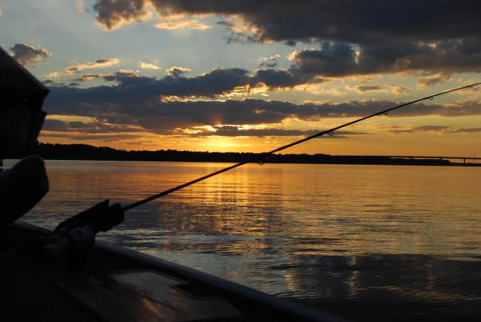 6. Fishing