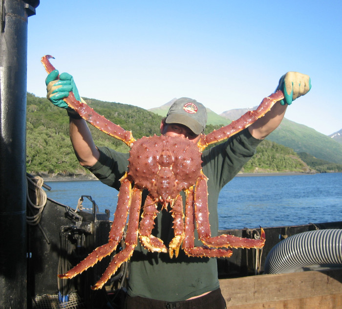 3. Crabbing: Alaskans are king when it comes to catching crabs.