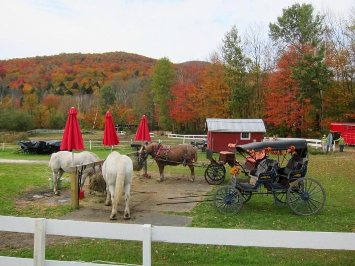 13.  Sleigh/Carriage Ride